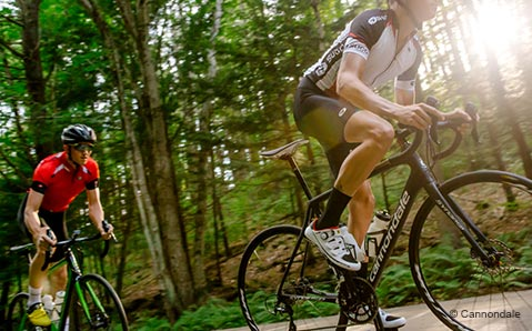 Cannondale Synapse - Touren-Rennräder mit Komfort
