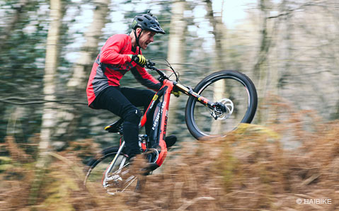 Haibike XDuro - 100% ePerformance Bikes
