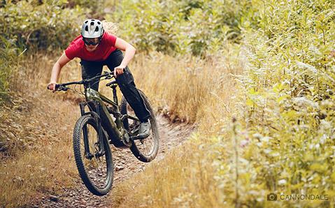 Ein Bike für jedes Terrain - das Cannondale Habit