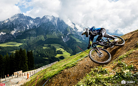 Freeride und Downhillbikes
