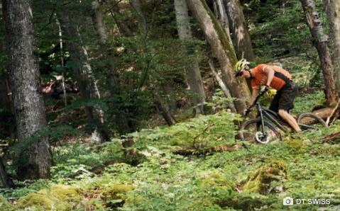 Hjul, nav og felger fra DT Swiss hjul