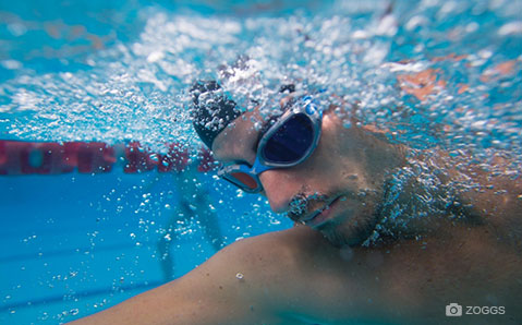 Zoggs svømmebriller