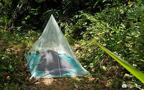Insektenschutz – Clever gegen Mücken, Zecken & Co.