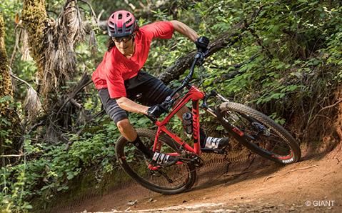Tour & Trail bikes